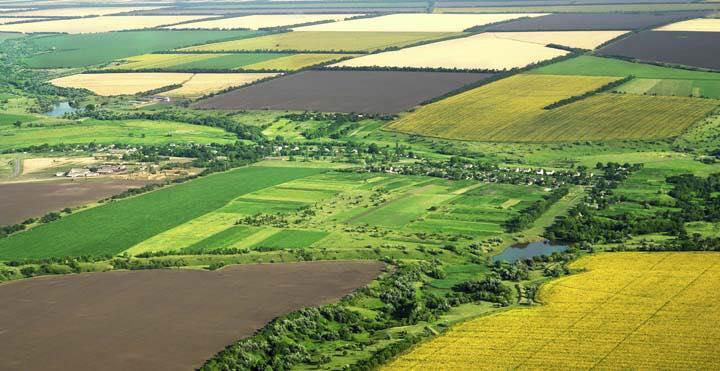 Cele mai scumpe terenuri agricole, in Ialomita si Calarasi. Harta preturilor pe regiuni