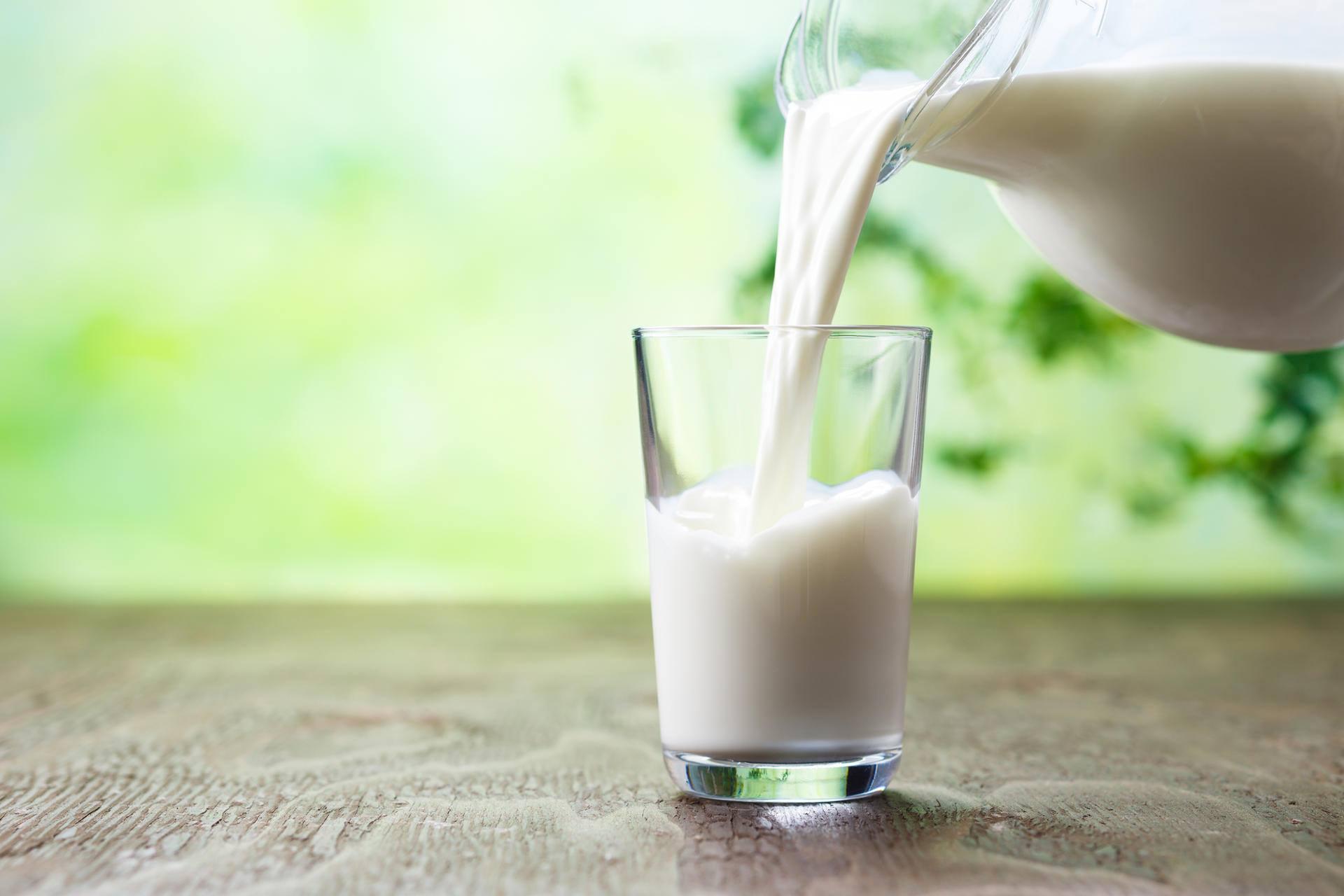 Nebunie la Vaslui. O noua fabrica de lactate la Barlad!