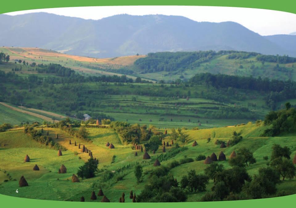 Fonduri europene de peste 2,6 miliarde de euro pentru fermieri pe masuri de agro-mediu si clima