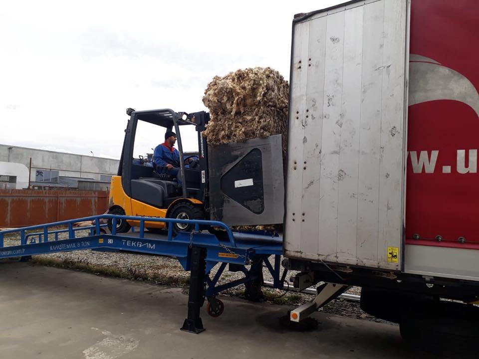 Peste 1500 tone de lana colectate in Constanta si Sibiu