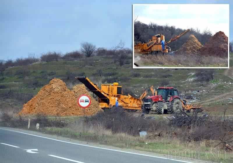 Romania reala! Defrisare… din eroare: Proprietarul unei livezi de la marginea Oradei s-a trezit ca i-au disparut pomii de pe 1,6 hectare
