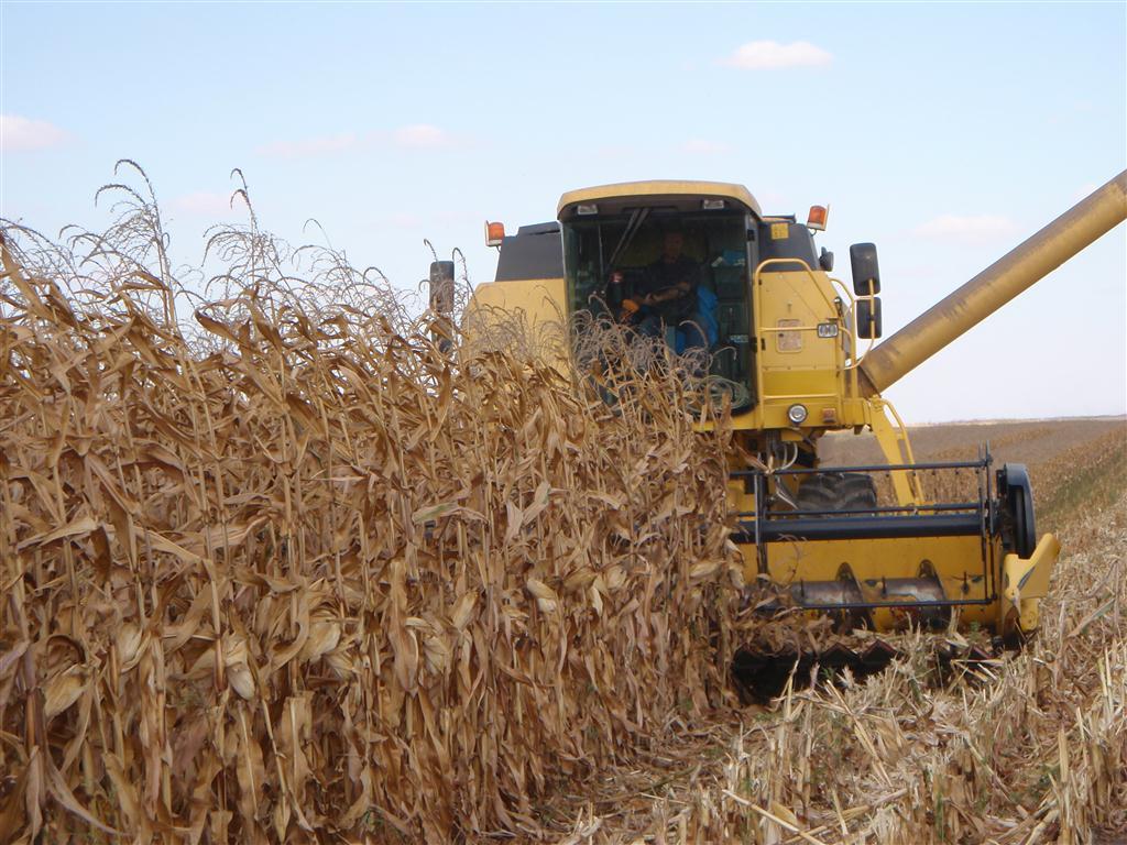 Gata, pana aici! Avem acum si Uniunea Nationala a Cooperativelor Agricole de Productie Integrata (UNCAPI)!
