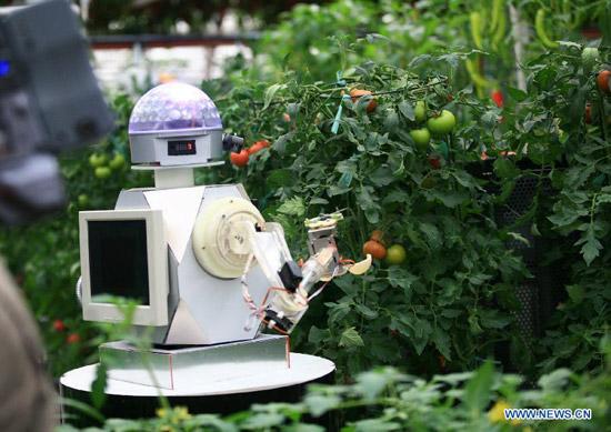 Tehnologie de ultima ora in legumicultura romaneasca. Robotii inteligenti fac deja treaba la Institutul Horting