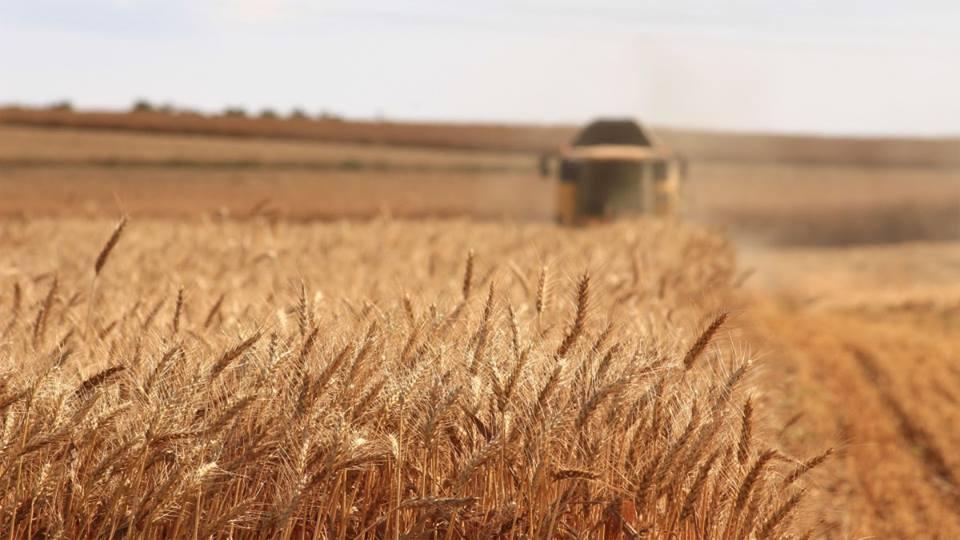 Pasii ce trebuie sa fie urmati de cooperativele agricole pentru recuperarea impozitului pe venitul platit, in 2017