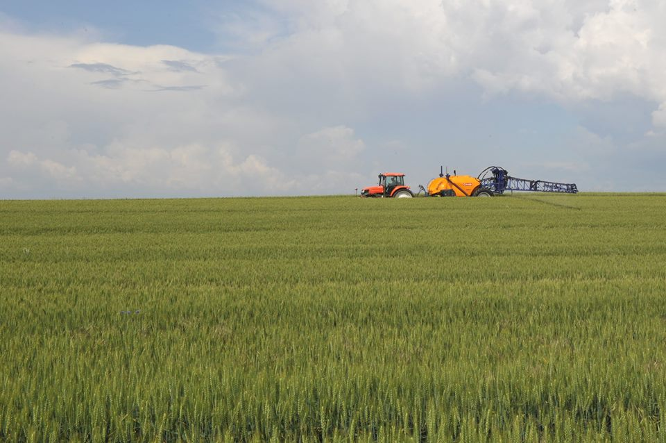 """APIA a publicat """"Ghidul fermierului privind ecoconditionalitatea–2018"""""""