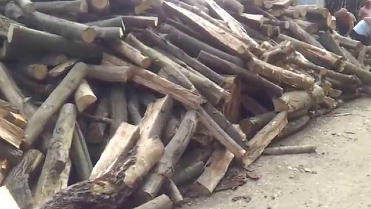 Fordaq: Lemnul  de foc pentru populatie putrezeste  pe drumuri forestiere in munti!