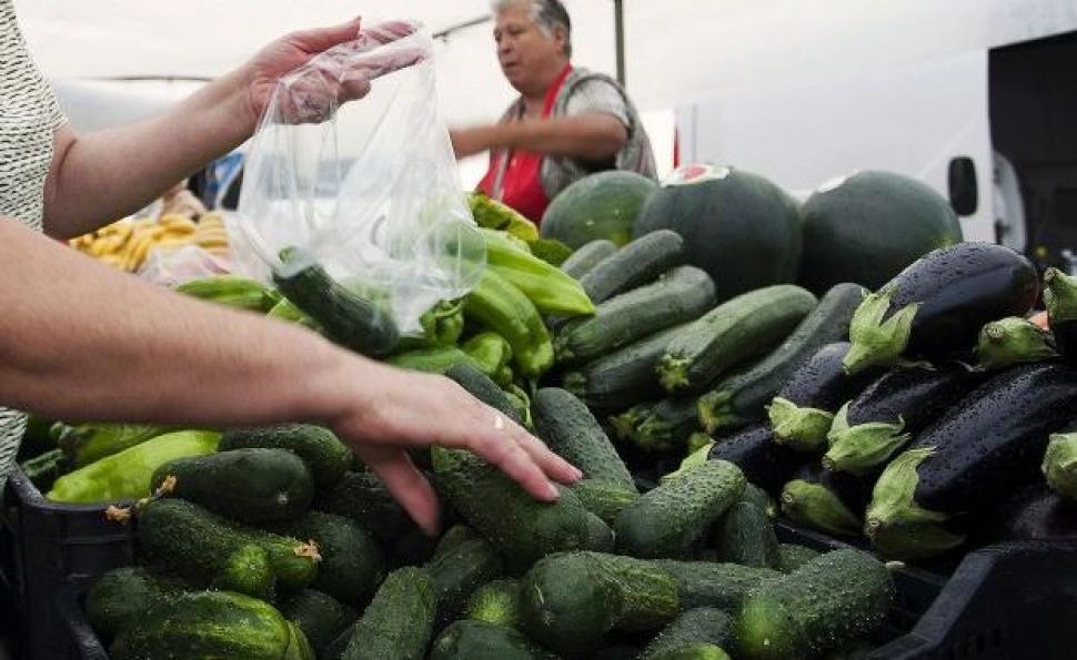 Istoria se repeta si in acest an. In Oltenia, producatorii au ajuns sa vanda castravetii cu mai putin de 30 de bani/kg!