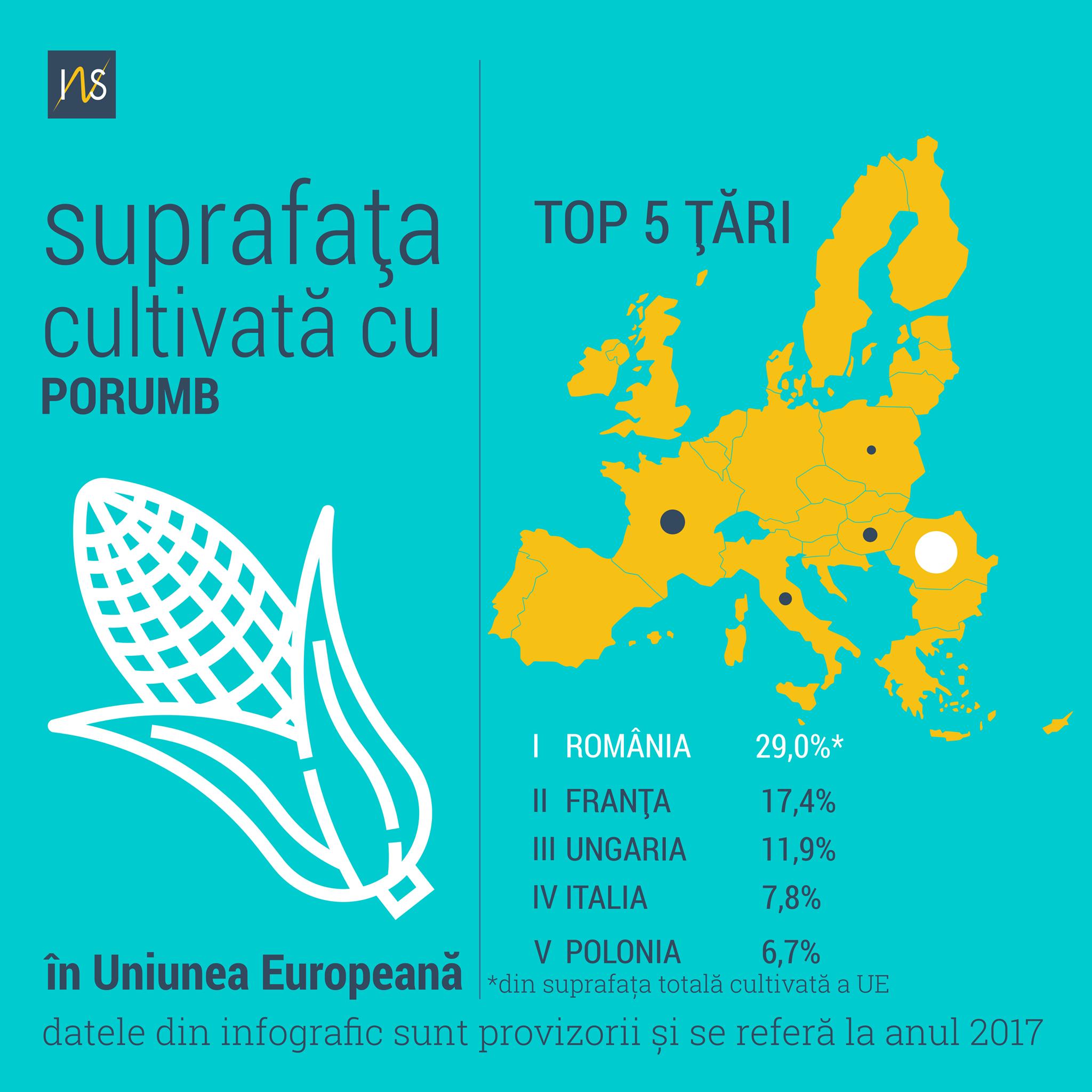 Romania, pe primul loc la suprafata cultivata cu porumb, in UE