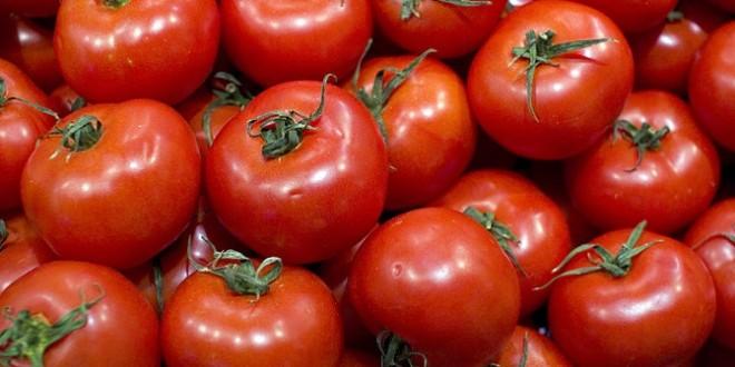 64% din beneficiarii programului Tomata sunt tineri, iar dintre acestia 757 sunt romani reveniti acasa
