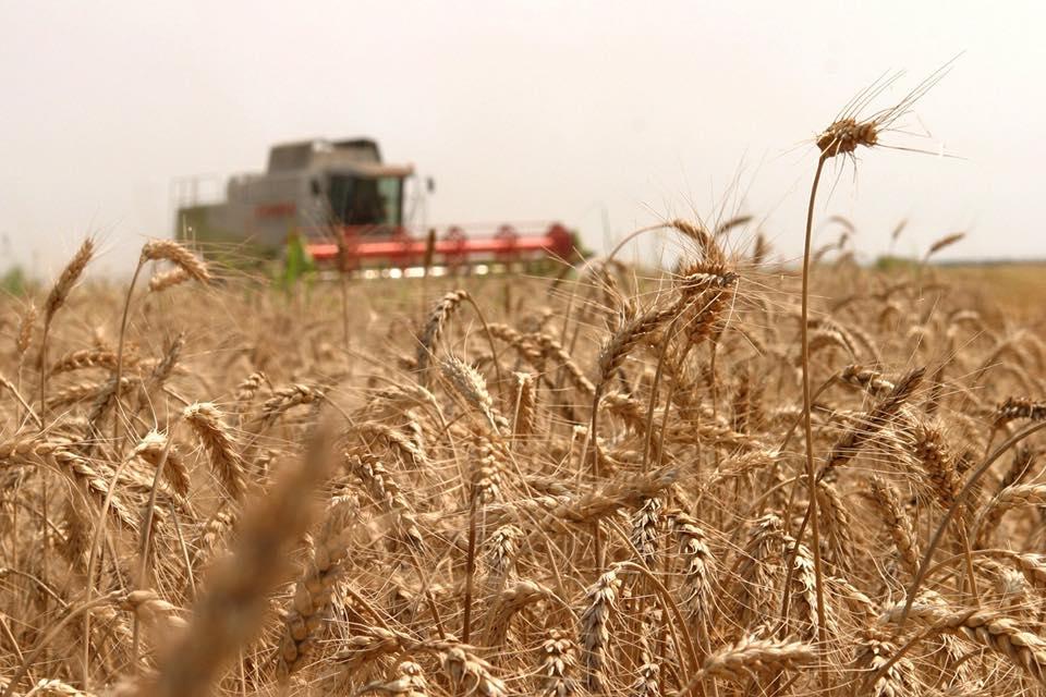 AFIR a publicat Ghidul pentru finantarea investitiilor in exploatatiile agricole