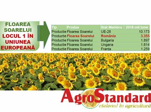Top producatori floarea soarelui in UE, in 2018. Romania, pe prima pozitie