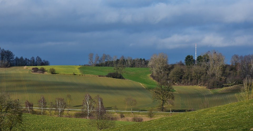 Unda verde de la Cotroceni pentru dezvoltarea cooperativelor agricole, in Romania!