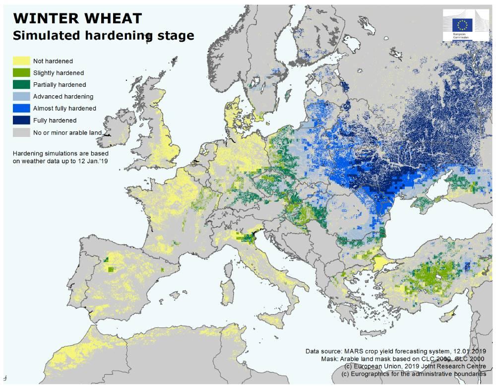 Raport CE privind starea culturilor agricole. Pagube minore, la acest moment
