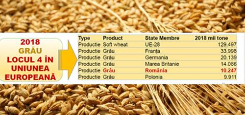 Top producatori grau in UE, in 2018. Romania, pe locul patru