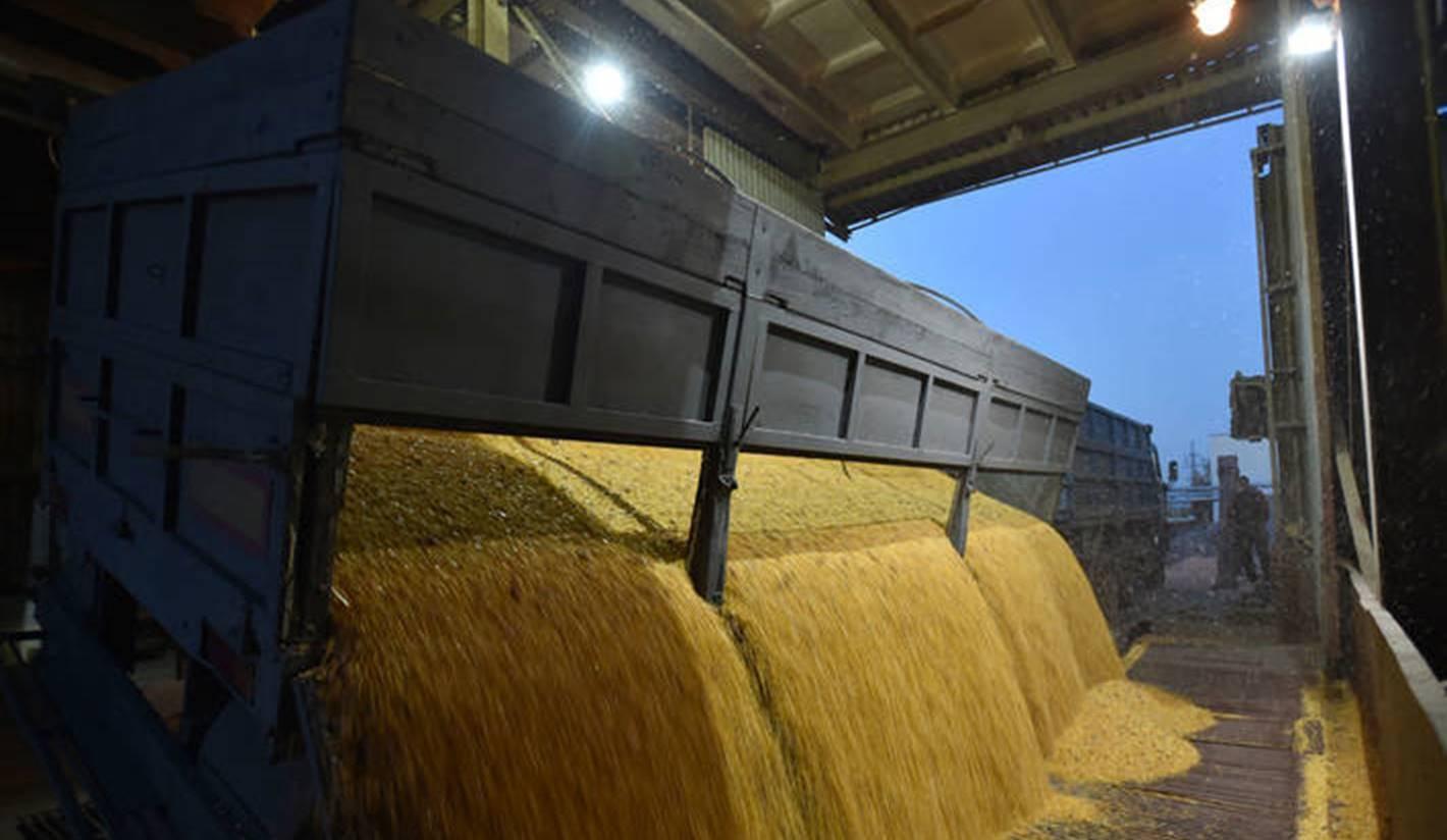Preturile la cereale la Marea Neagra se mentin ridicate