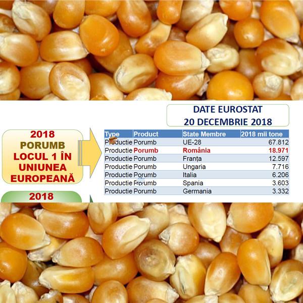 Romania, locul 1 in UE la productia de porumb, in 2018. Pe cand un milion de hectare cu o medie de 16 to/ha?