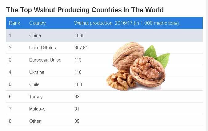 Top mondial producatori de nuci. China si SUA ocupa primele doua pozitii
