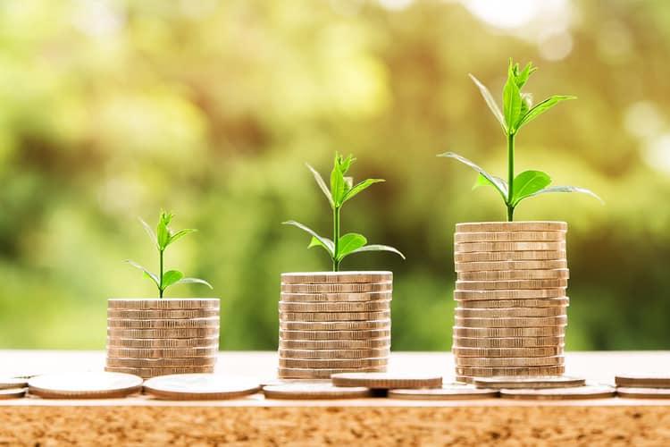 Ce investitii pot fi finantate cu ajutorul creditelor cu garantie FEI