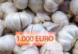 USTUROI_1000 EURO
