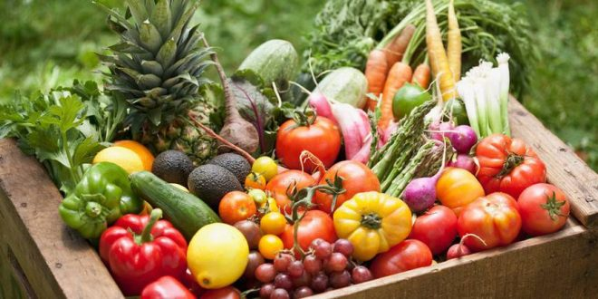 Nivel record pentru agricultura ecologica: 70 mil. ha cultivate, in 2017, la nivel mondial