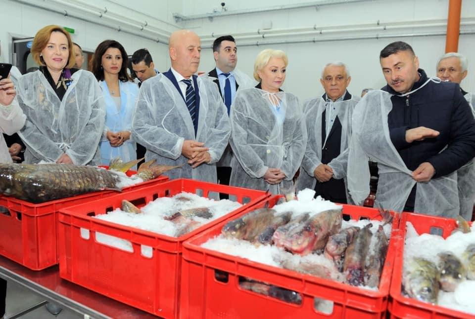 Bursa de peste de la Tulcea a fost inchisa pana in iunie! Pana trece perioada de prohibitie..