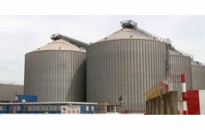 4 mil. tone de cereale au trecut prin portul Constanta, in primele 3 luni din 2019
