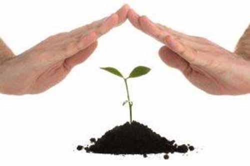 98 de cereri depuse pe sM 17.1 – Prime de asigurare a culturilor, animalelor si plantelor din cadrul PNDR