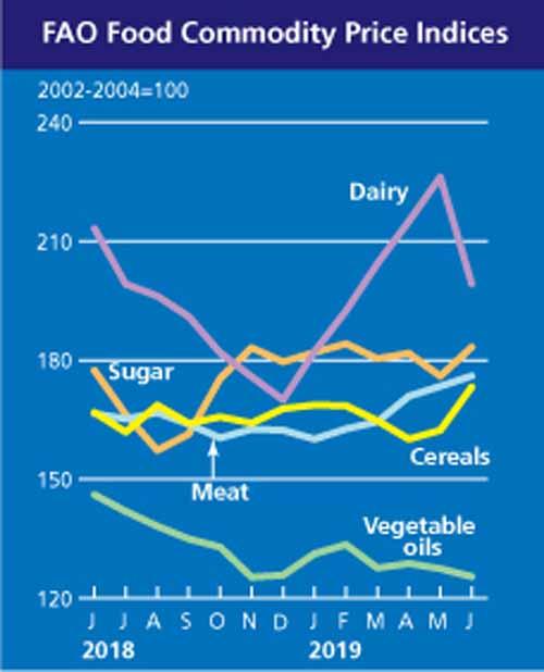 FAO: Pretul cerealelor a crescut cu 6,7%, in iunie