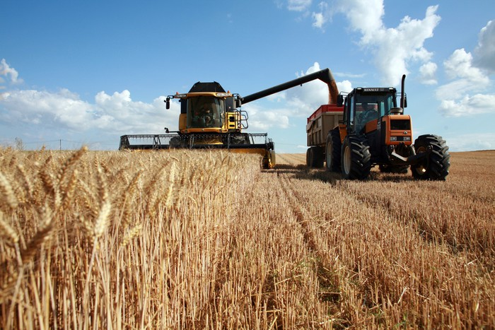Productii de peste 7 tone/ha la orz si grau la Agro Total Adunatii Copaceni