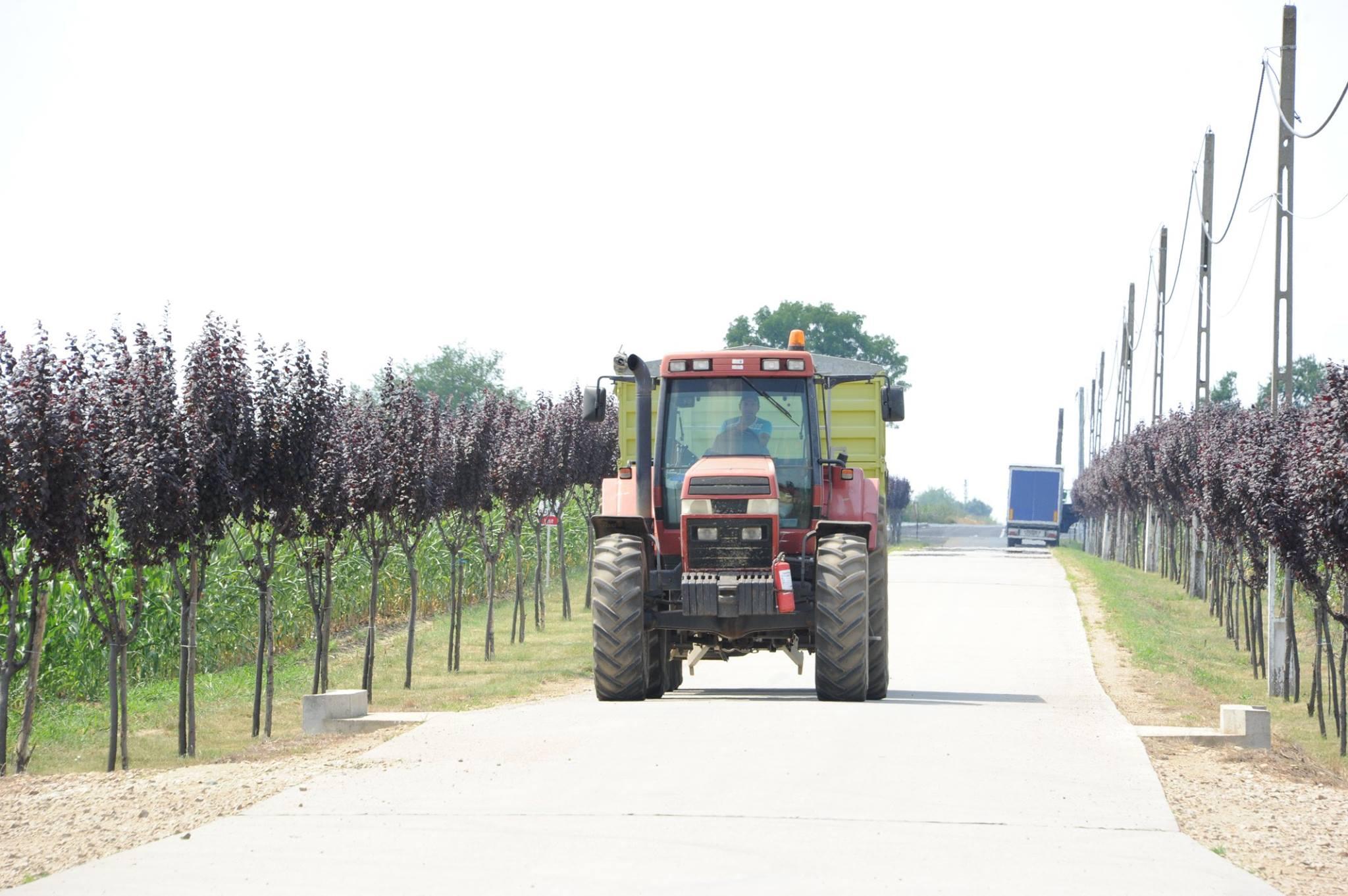 Dezastrul agriculturii romanesti: Pana si fermierii din R. Moldova stau mai bine la incarcatura suprafata pe tractor