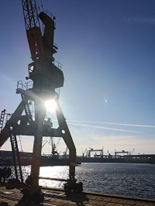 10,7 mil. tone de cereale au trecut prin porturile romanesti, in primele 6 luni.  Avans de 26,3% fata de 2018