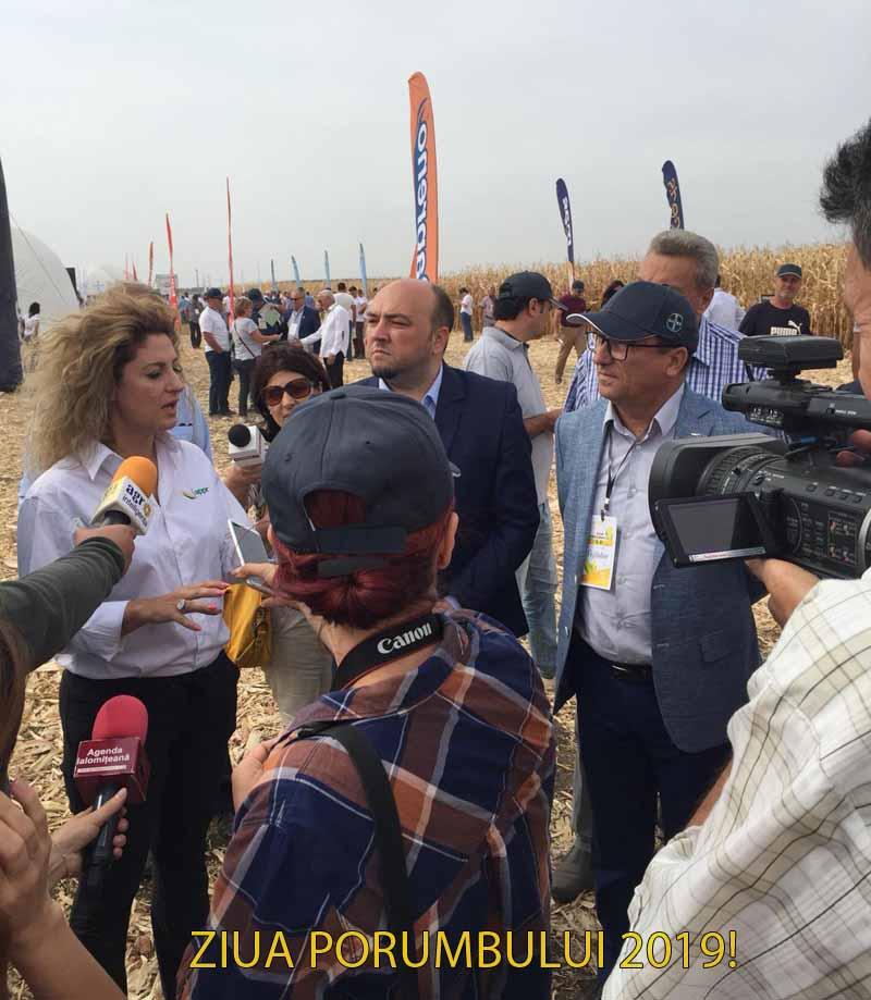 Alina Cretu, APPR: Varfurile de productie din UE la porumb nu le depasesc pe cele din Romania