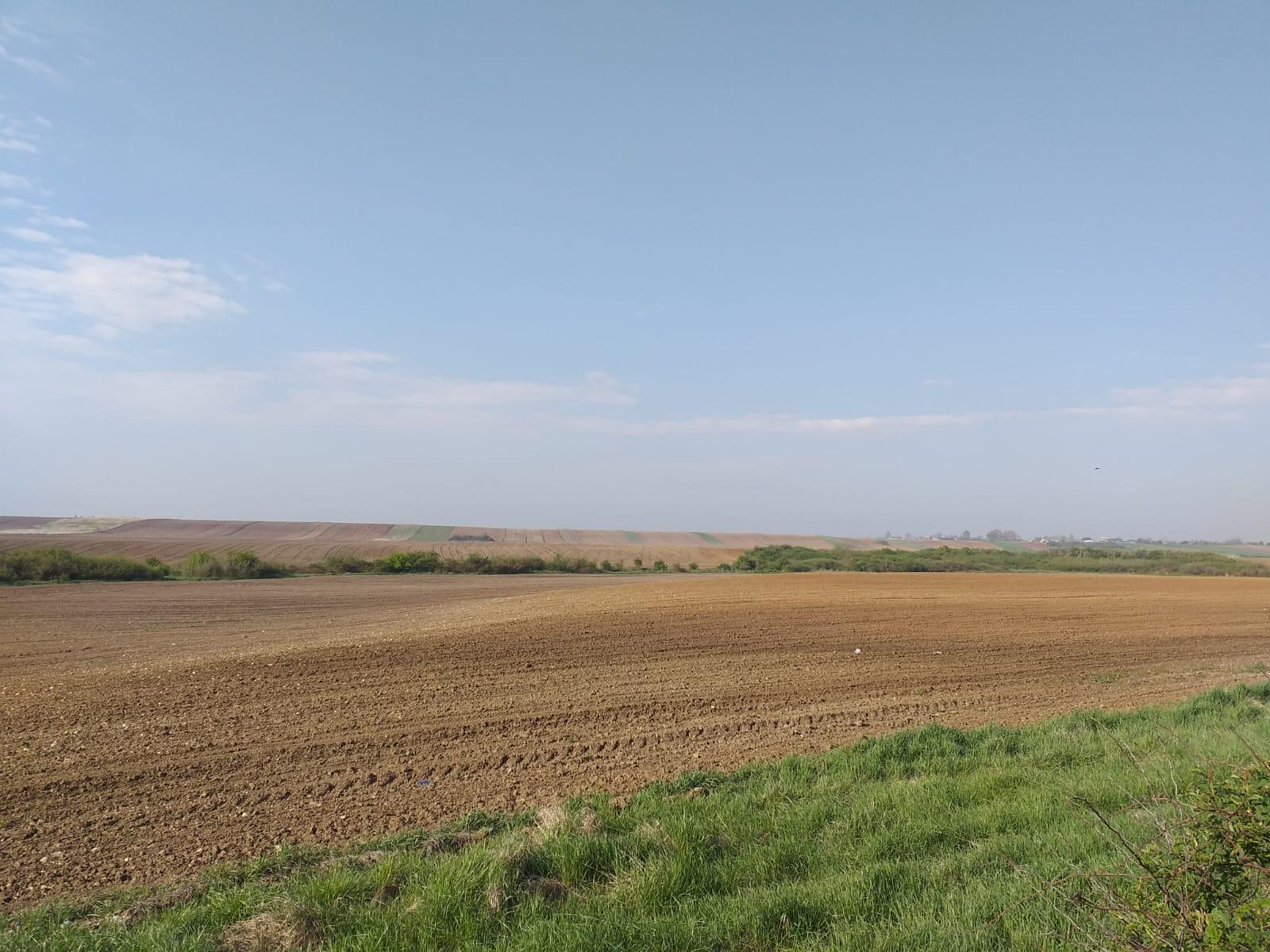 Reglementari noi in utilizarea durabila a pesticidelor pe teritoriul Romaniei