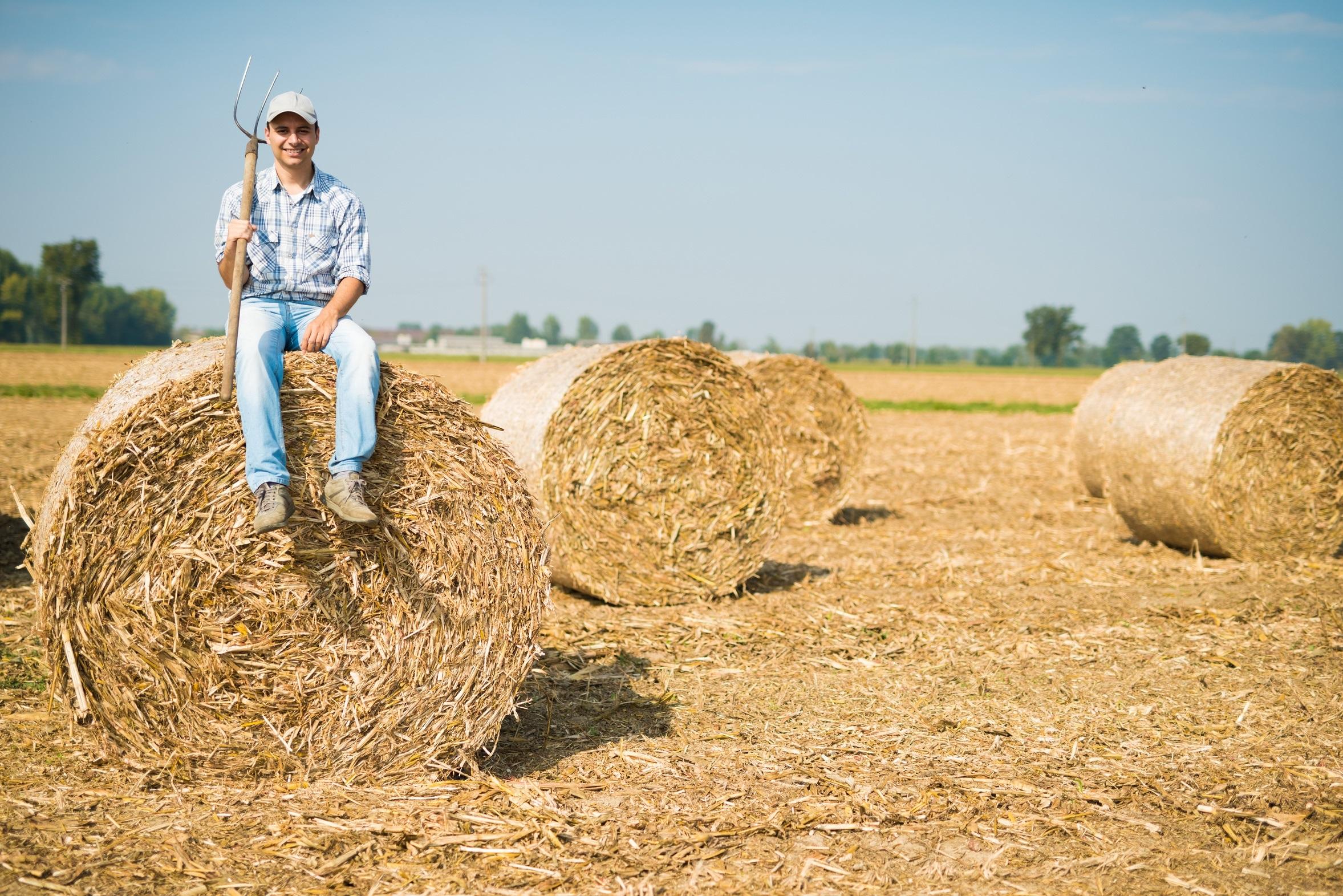 Satenii din Podari (Dolj) nu vor fabrica de bioetanol in localitate