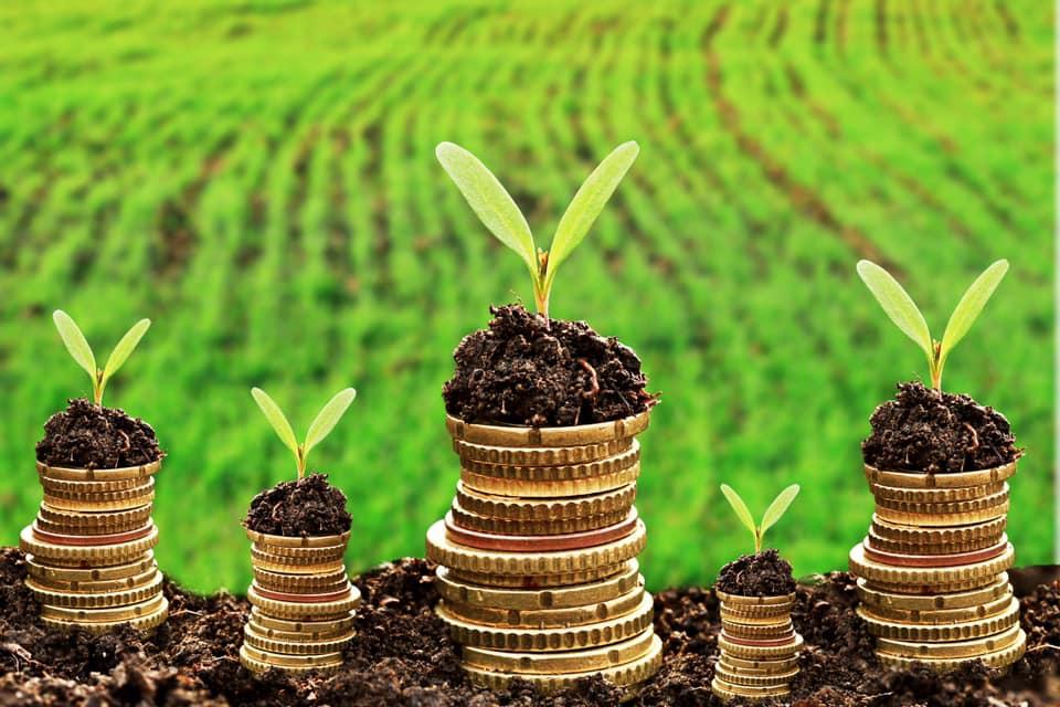 APIA: 92,1% din fermieri au fost autorizati la plata avansului