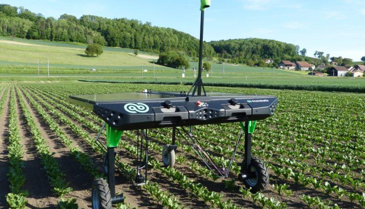 Drone si roboti care inlatura buruienile prin electrocutare