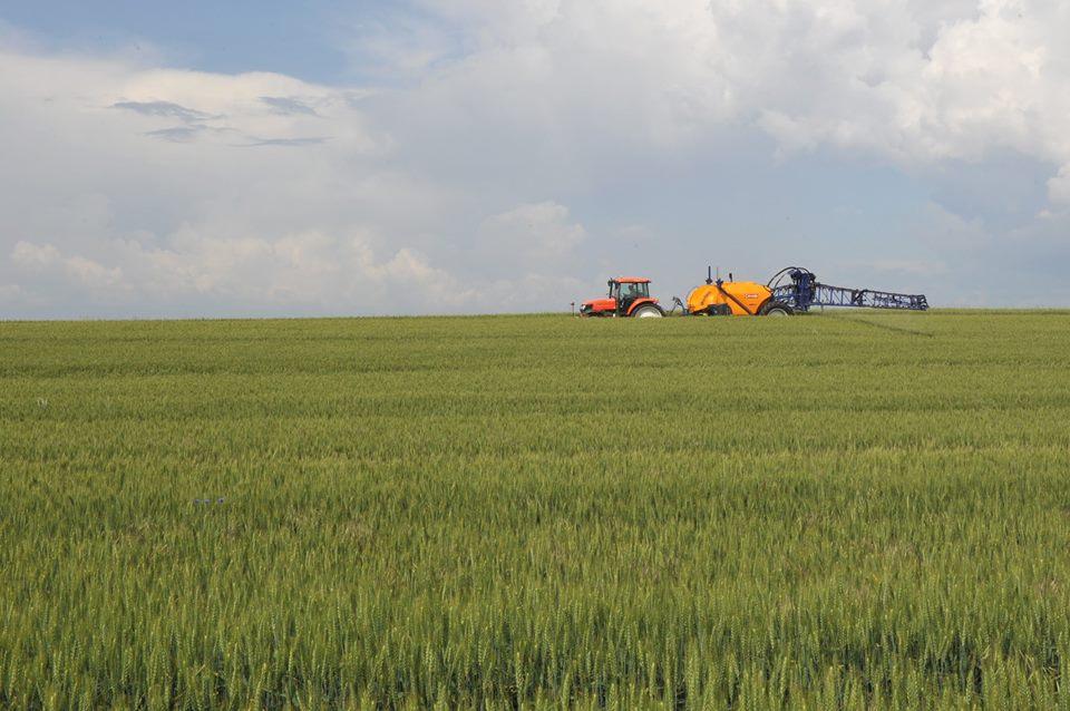 Romania, locul trei in UE in topul tarilor care au cunoscut un avans al productiei agricole, in 2018