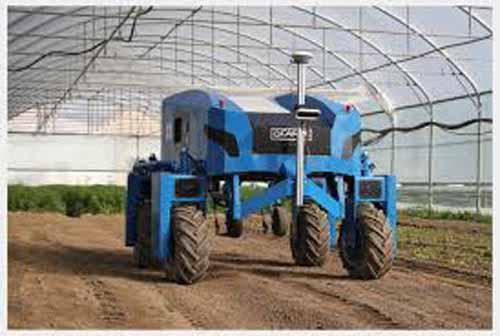 Anatis, robotul ideal pentru culturile de legume