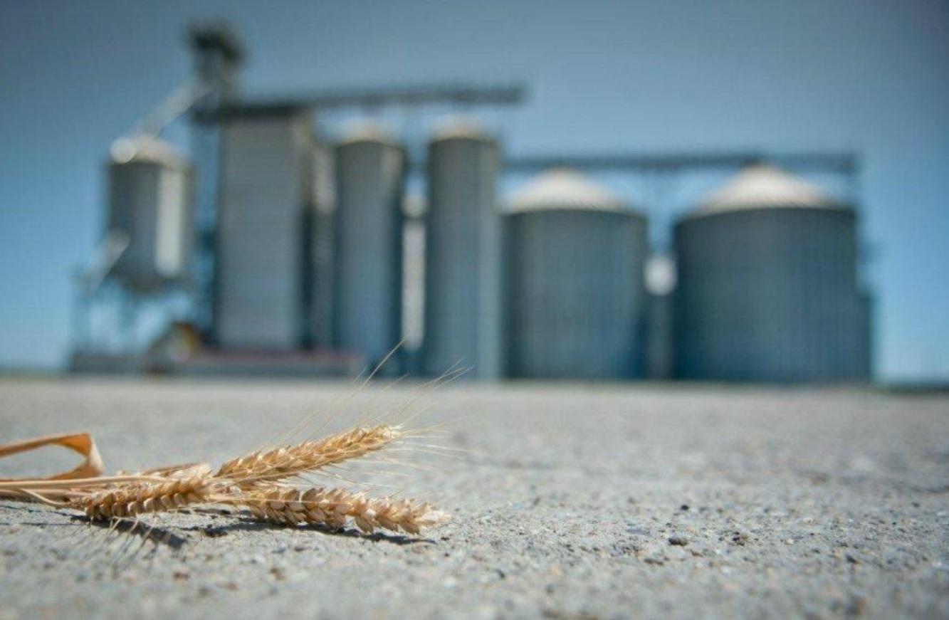 Fondul de investitii ROCA, actionar la traderul de cereale RDF din Arad