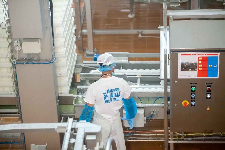 FrieslandCampina Romania face angajari la fabricile din Cluj si Mures