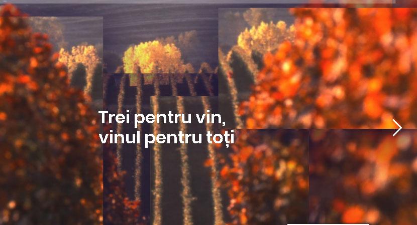 Oprisor, Serve si Vinarte lanseaza Campania «Trei pentru vin, vinul pentru toti»