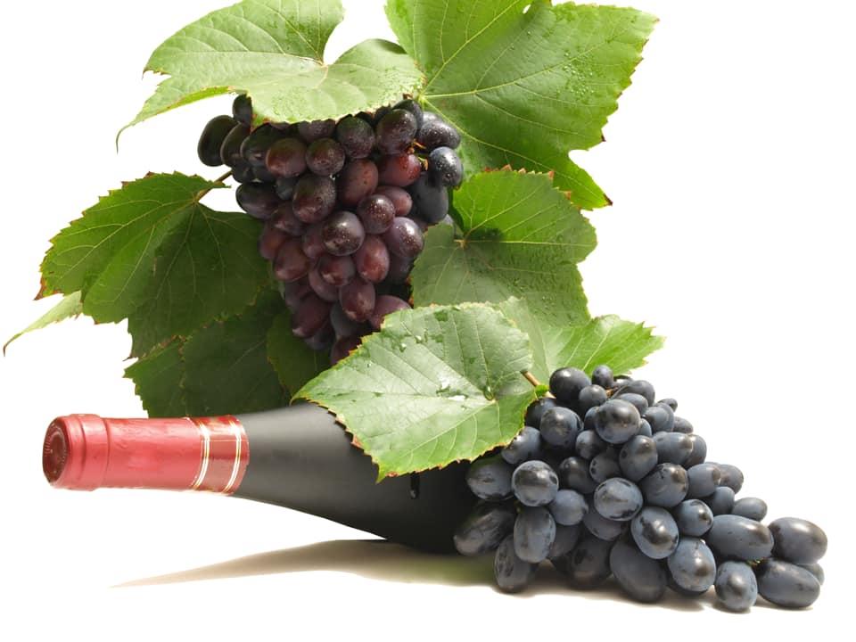 APIA: Sprijin privind asigurarea recoltei de struguri pentru vin