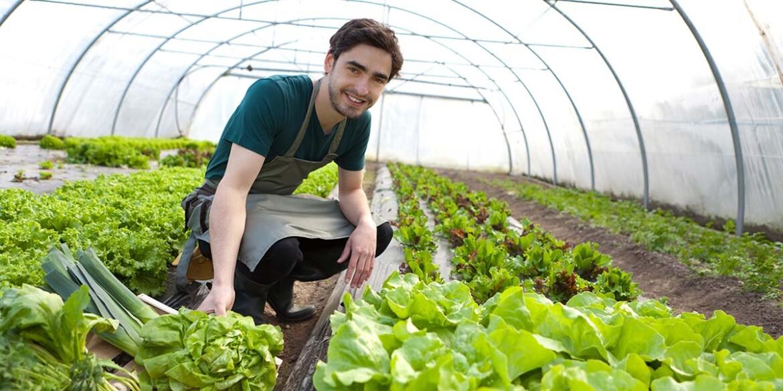 PNDR 2014-2020: 43 mil. euro pentru tinerii fermieri. Jumatate sunt pentru diaspora!