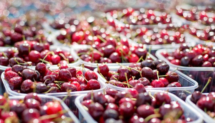 Aurel Tanase, ProdCom Legume-Fructe: Vrem sa infiintam o cooperativa a producatorilor de cirese