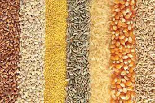 """""""Africa"""" Europei?! Aceasta este pozitia Romaniei in agrobusiness!"""