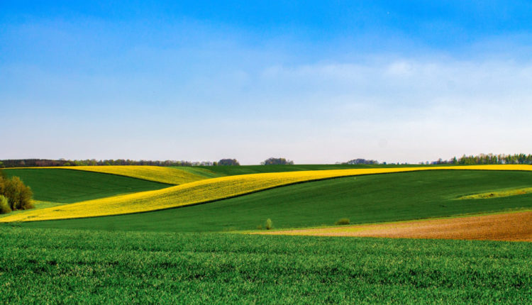 Concesionarea de terenuri tinerilor fermieri, o ecuatie cu iz electoral