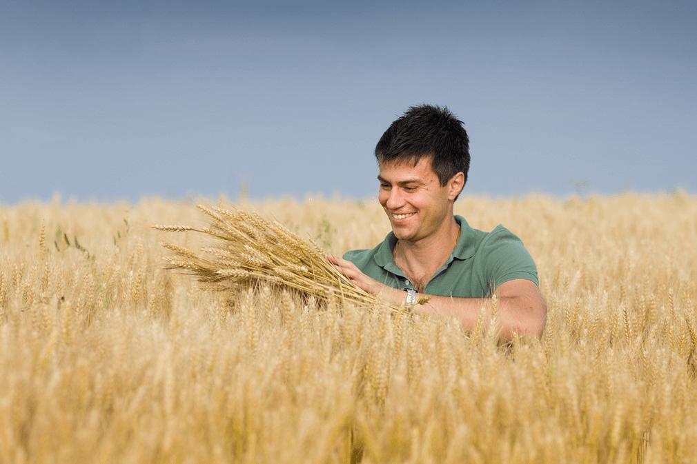 Terenuri de pana la 50 ha pentru tinerii fermieri