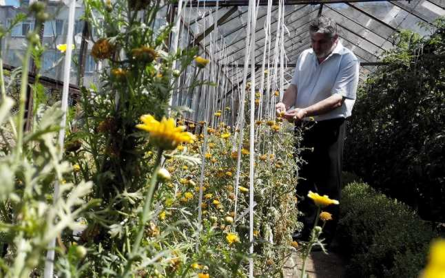 Cercetatorul Costel Vinatoru: Prea multi agricultori fac fertilizare dupa ureche