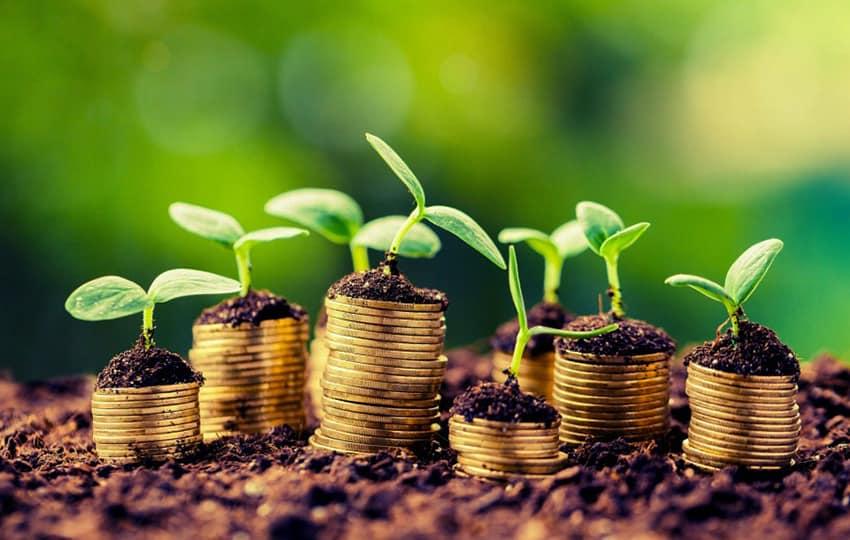 APIA a autorizat la plata 135, 4 mil euro pentru 30.005 fermieri
