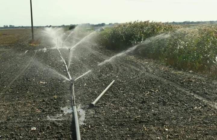 Fermierii buzoieni au prelungit contractele cu ANIF pana la 15 octombrie!